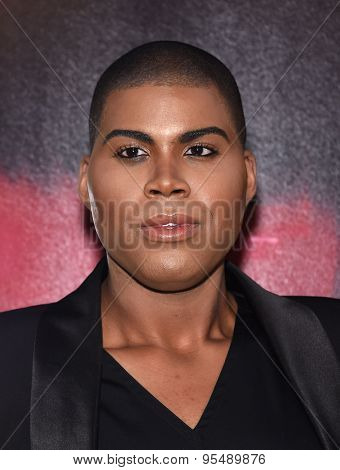LOS ANGELES - JUL 07:  EJ Johnson arrives to the