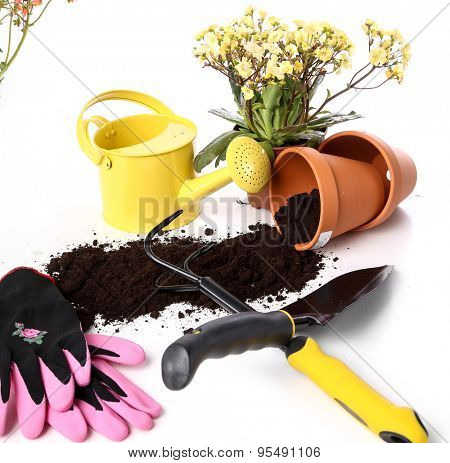 Garden, equipment. Tools for gardening
