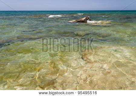 Caspian Sea In The Summer.