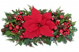 foto of poinsettia  - Thanksgiving and christmas poinsettia flower display with red baubles - JPG