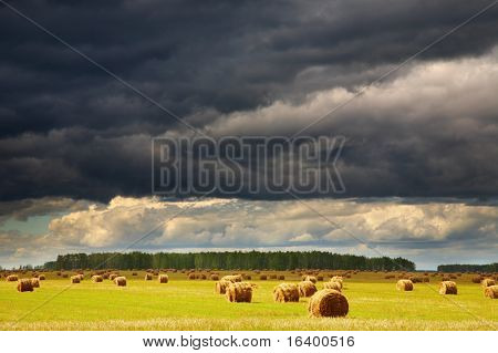 Landscape with hayfield and storm clouds