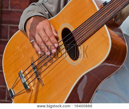Fretless Acoustic Bass Guitar