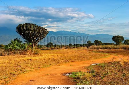 Sabana Africana, Queen Elizabeth National Park, Uganda