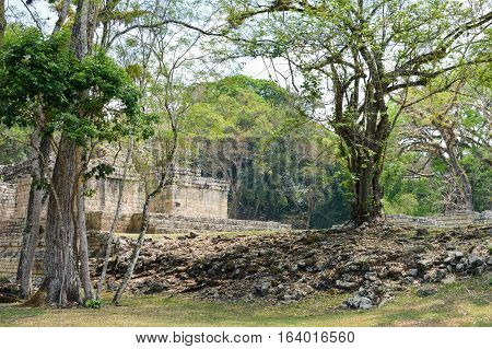 Some of the ancient structures at Copan archaeological site of Maya civilization in Honduras. Central America