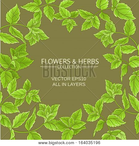 vector frame with peppermint green leaves on color background