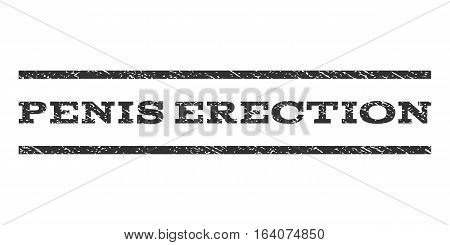 Penis Erection watermark stamp. Text tag between horizontal parallel lines with grunge design style. Rubber seal gray stamp with unclean texture. Vector ink imprint on a white background.