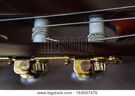 guitar neck close-up tune the guitar, stringed musical instrument