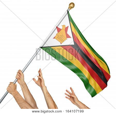 Team of peoples hands raising the Zimbabwe national flag, 3D rendering isolated on white background