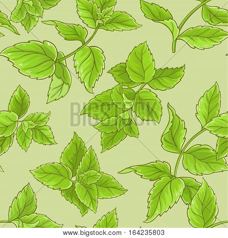 peppermint vector seamless pattern on color background