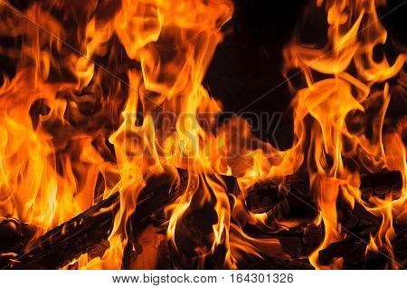Fire flames. closeup of Flame in a fireplace flames and burning woods