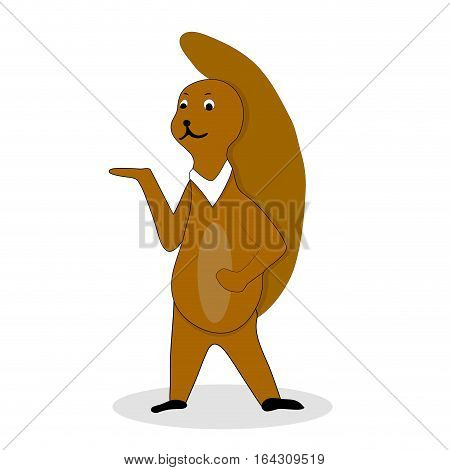 Squirrel character cute cartoon. Squirrel isolated illustration squirrel vector