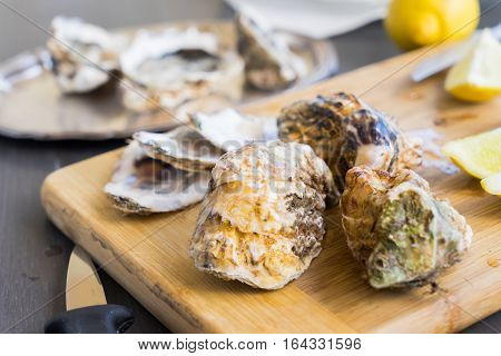 Raw oysters closed shells on wooden cutting board
