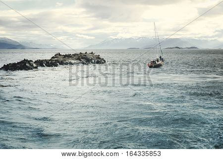 Sailing boat passing by Sea Lion colony Ushuaia Tierra Del Fuego Patagonia Argentina South America
