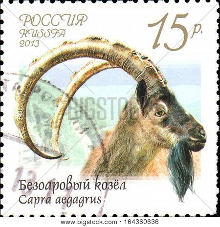 RUSSIA - CIRCA 2013: Postage stamp printed in Russia shows bezoar goat (Capra aegagrus), series Fauna of Russia. Wild goats and rams