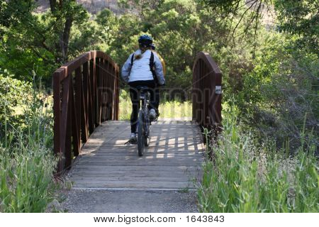 Bicyclists On A Bridge