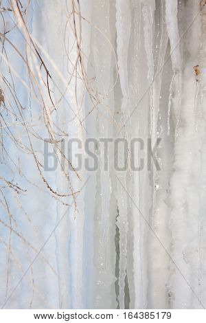 winter frozen scenery with white icicles on background