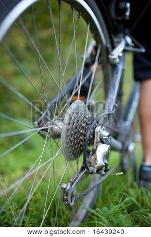 biking - rear wheel of a young woman's mountain bike on a green mountain path (shallow DOF - selective focus)
