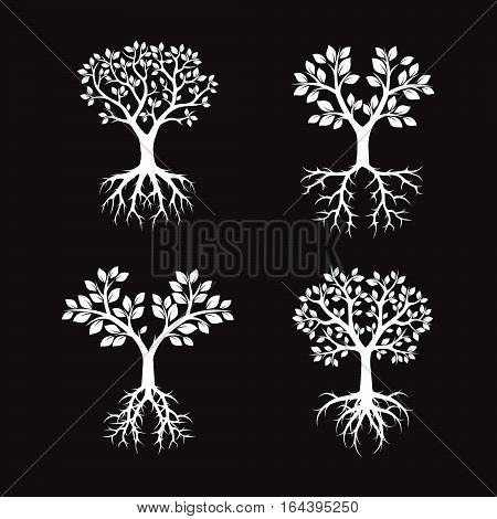 White Trees and Roots. Vector Illustration and graphic element.
