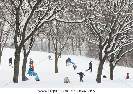 Sledding on a snowy day