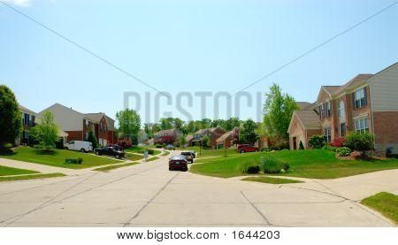 The Suburbs