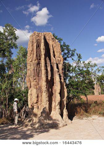 Giant Termite Mound - Litchfield NT