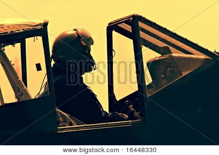 Fighter Pilot in old plane