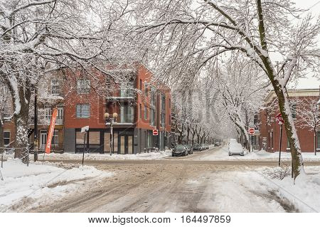 Montreal CA - 4 January 2017: Cars and trees covered in snow on Bordeaux Street