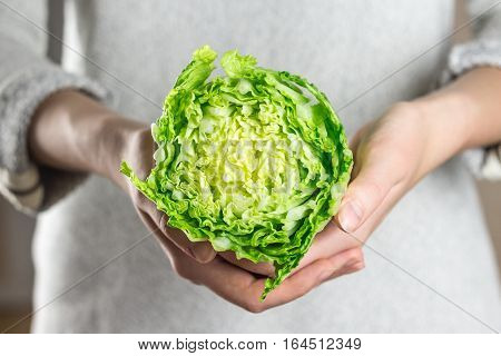 Holding fresh chinese cabbage in hands. Young person holding cut pak choi cabbage in hand in home kitchen