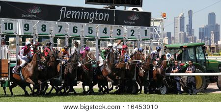 MELBOURNE - MARCH 13: Horses jump from the starting stalls in the Roy Higgins Quality, won by Elmore at Flemington on March 13, 2010 - Melbourne, Australia.