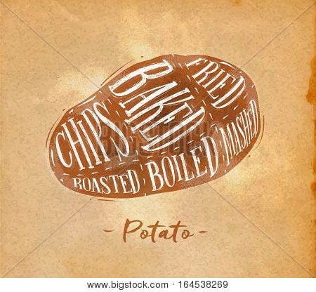 Poster potato cutting scheme lettering chips baked fried roasted boiled in retro style drawing on craft paper background