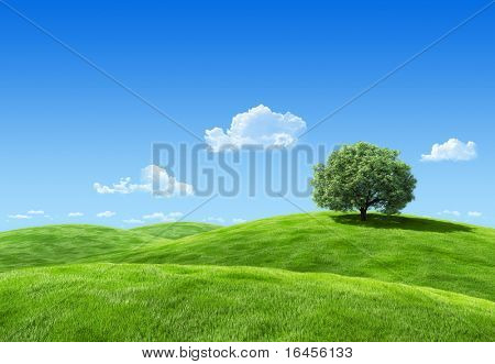 Very detailed 25 megapixel lea with tree template - Nature collection