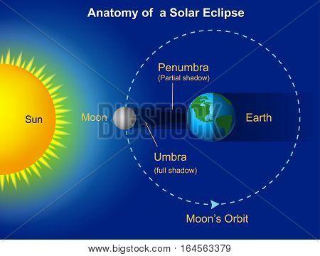 Vector illustration of Solar eclipse diagram on blue background