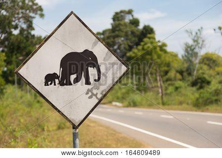 Unusual road sign in Sri Lanka. Caution, elephants crossing the road.