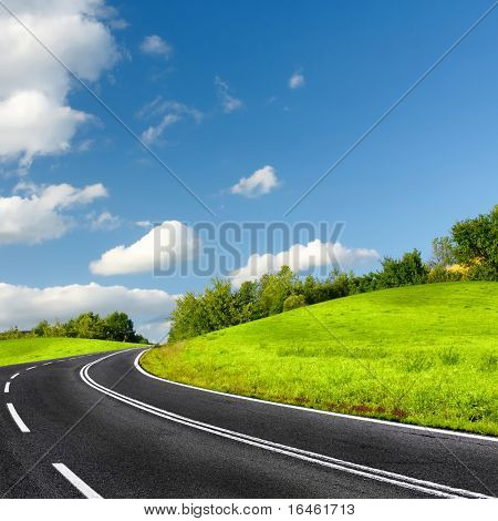 The road on a sunny summer day