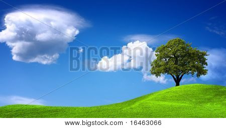 Green landscape panorama