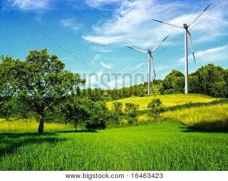 Windmill and beautiful summer landscape
