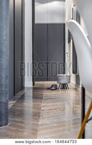 Home Interior With Black Wardrobe