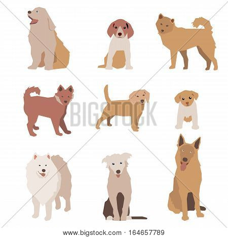 Set of dog character illustration. Dogs isolated on white. Graphic illustration