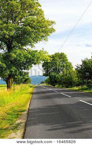 Una calle en el país