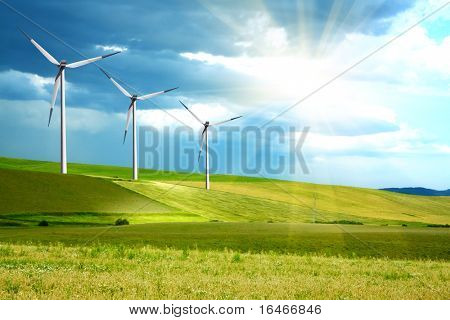 Wind turbines farm on green island