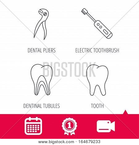 Achievement and video cam signs. Tooth, electric toothbrush and pliers icons. Dentinal tubules linear sign. Calendar icon. Vector