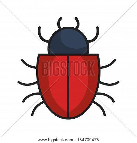bug alert isolated icon vector illustration design