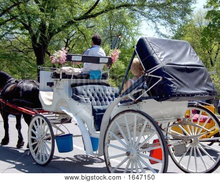 Horse And Carriage 2