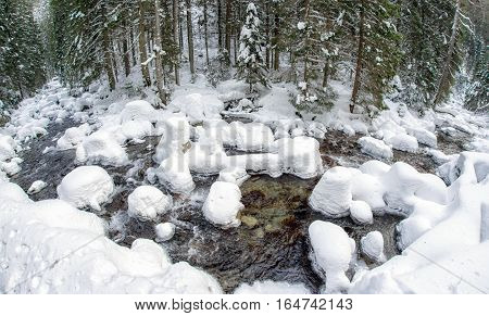 Frozen river in winter forest. Jalovecka valley in Slovakia. Fish-eye photography