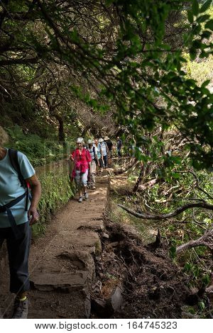 MADEIRA, PORTUGAL - SEPTEMBER 6, 2016: Tourist is walking along levada canal. Madeira island Portugal