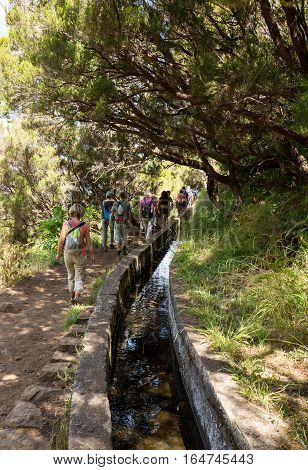 Tourist is walking along irrigation canals. Historic water supply system known as Levada in tropical forest Madeira Island Portugal