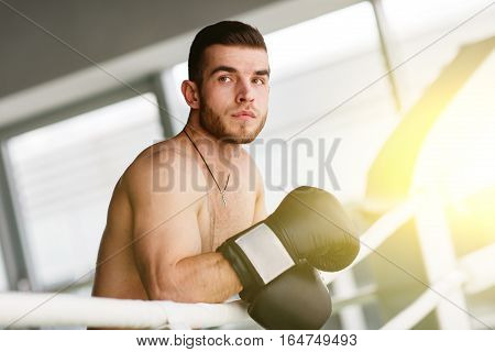 Photo of beautiful sportsman in boxing ring with boxing gloves