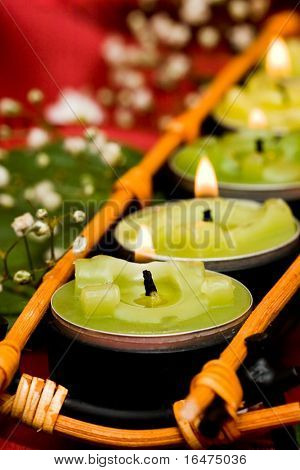 Row of green candles and white flowers
