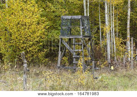 Hunting pulpit, tower hidden in the forest. Farmland this side, autumn, fall. Some aspen trees in the background.