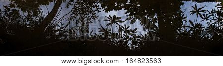 Beautiful panoramic landscape reflected in water coastline. Dark gloomy background about nature and the environment.